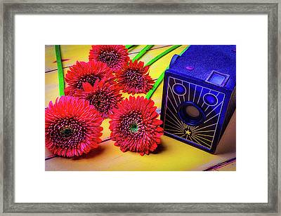 Old Camera And Dasies Framed Print by Garry Gay
