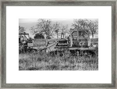 Old Cat IIi Framed Print by Ricky Barnard