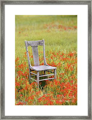 Old Chair In Wildflowers Framed Print