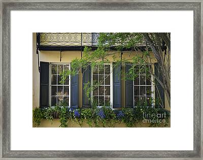 Old Charleston Window  Framed Print