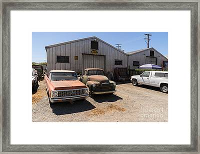 Old Chevrolet Trucks At The Art Mossi Auto And Truck In Petaluma California Usa Dsc3853 Framed Print by Wingsdomain Art and Photography