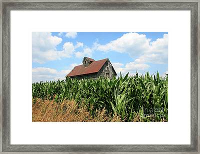 Old Corn Crib Framed Print