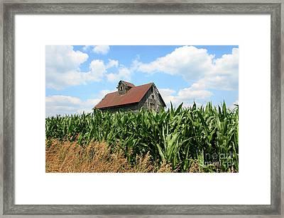 Old Corn Crib Framed Print