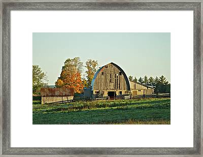 Old Country Barn_9302 Framed Print by Michael Peychich