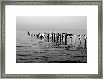 Old Dock  Framed Print