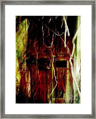 Old Door Set Four Framed Print by Kathy Daxon