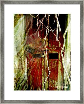 Old Door Set Three Something There Framed Print by Kathy Daxon