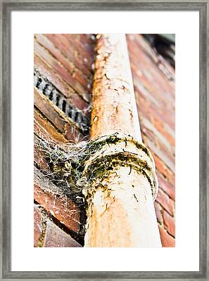 Old Drain Pipe Framed Print