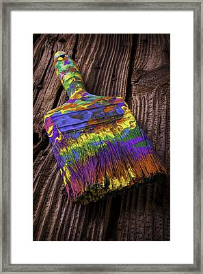 Old Dried Paintbrush Framed Print by Garry Gay