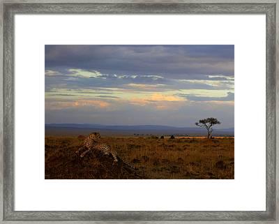 Old Earth Framed Print