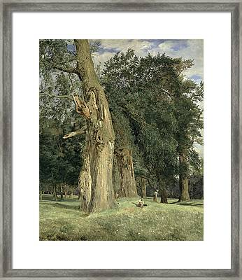 Old Elms In Prater Framed Print by Ferdinand Georg Waldmuller