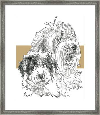 Old English Sheepdog Framed Print by Barbara Keith