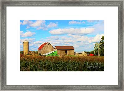 Old Family Farm Framed Print