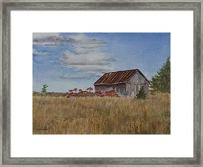 Old Farmer's Barn Framed Print by Debbie Homewood