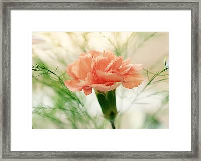 Framed Print featuring the photograph Old Fashion by Corinne Rhode