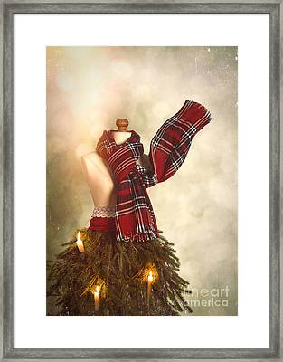 Old Fashioned Christmas Tree Framed Print by Amanda Elwell