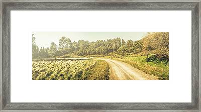 Old-fashioned Country Lane Framed Print