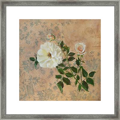 Old Fashioned Rose Framed Print by Carrie Jackson