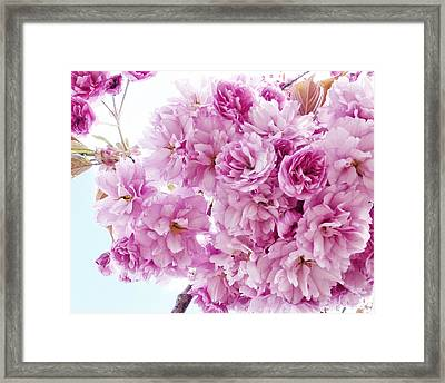Framed Print featuring the photograph Old Fashioned Vintage Charm by Connie Handscomb
