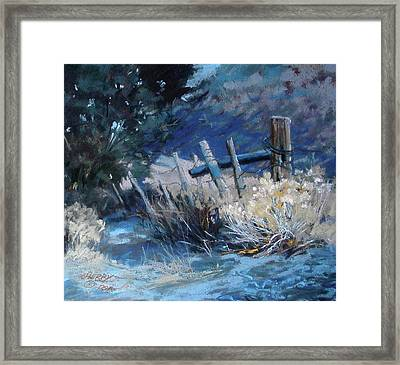 Old Fence Framed Print by Mary Ann Cherry