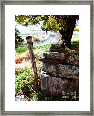Old Fence Post Orchard Framed Print by Janine Riley