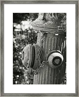 Old Fire Hydrant Framed Print
