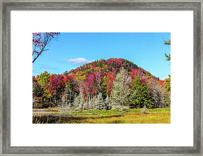 Old Forge Framed Print
