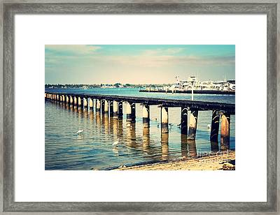 Old Fort Myers Pier With Ibises Framed Print