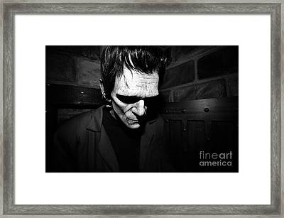 Old Frankie Framed Print by David Lee Thompson