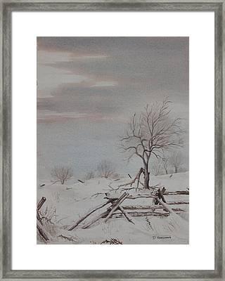 Old Friends  Framed Print by Debbie Homewood