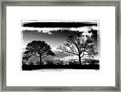 Old Friends Framed Print by Mark Denham