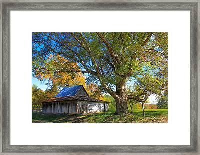 Old Friends Rustic Barn Majestic Oak Tree Art Framed Print by Reid Callaway