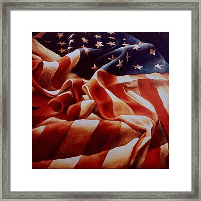 Old Glory Framed Print by Michael Lang