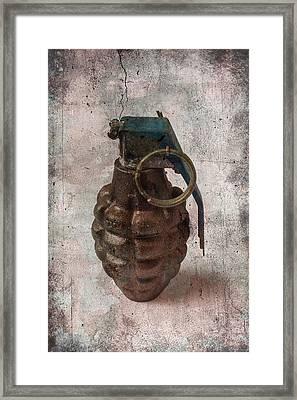 Old Grenade Framed Print by Garry Gay