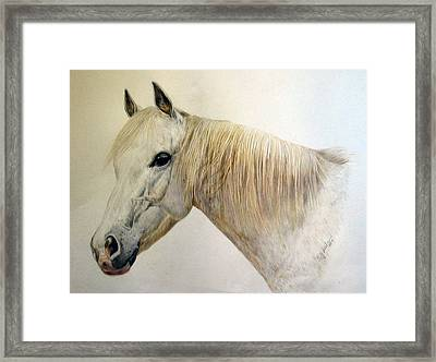 Old Grey Framed Print by Sue Ireland