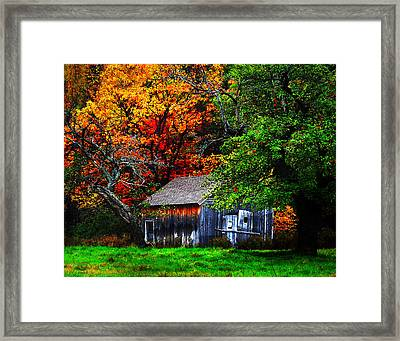 Old Homestead And The Apple Tree Framed Print by Vicki Lea Eggen