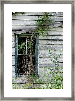 Old House Framed Print by Margaret Palmer