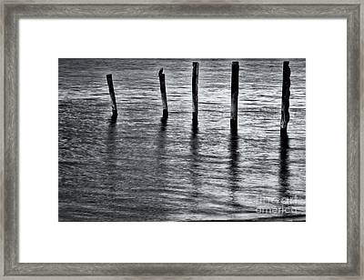 Framed Print featuring the photograph Old Jetty - S by Werner Padarin