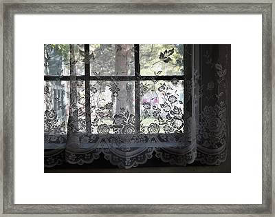 Old Lace And Old Times Framed Print