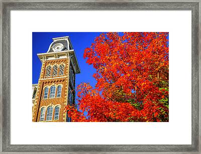 Old Main Maple Framed Print by Damon Shaw