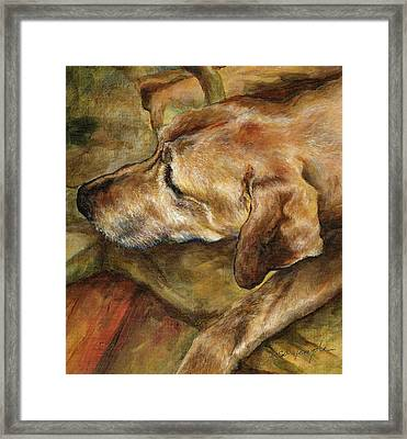 Old Man Framed Print by Leisa Temple