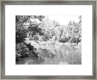 Old Michigan Creek Framed Print by Derek Clark