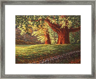 Old Neighbors, Minuteman National Historic Park, Ma Framed Print