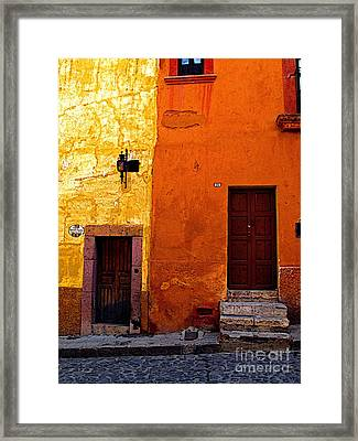 Old Neighbors Framed Print by Mexicolors Art Photography