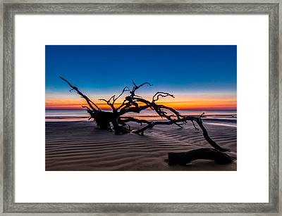 Old Oak New Day Framed Print by Debra and Dave Vanderlaan