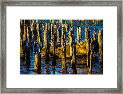 Old Pier Posts In Evening Light Framed Print by Garry Gay
