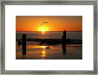 Old Piers Framed Print