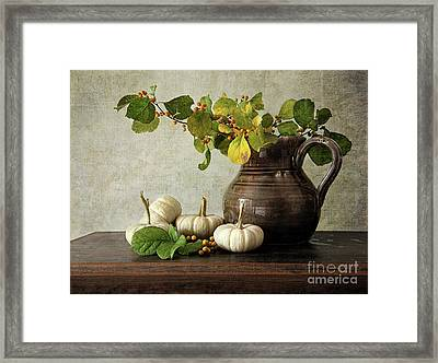 Old Pitcher With Gourds Framed Print by Sandra Cunningham