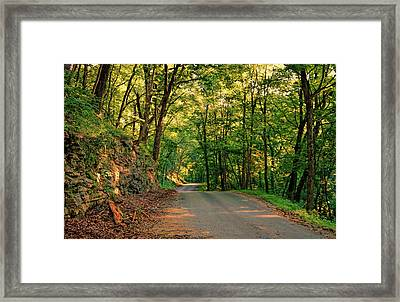 Framed Print featuring the photograph Old Plank Road by Cricket Hackmann