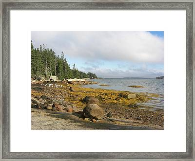 Old Quarry Beach, Stonington, Me Framed Print